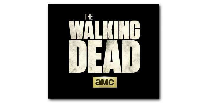 The Walking Dead Season 8 Casting Call